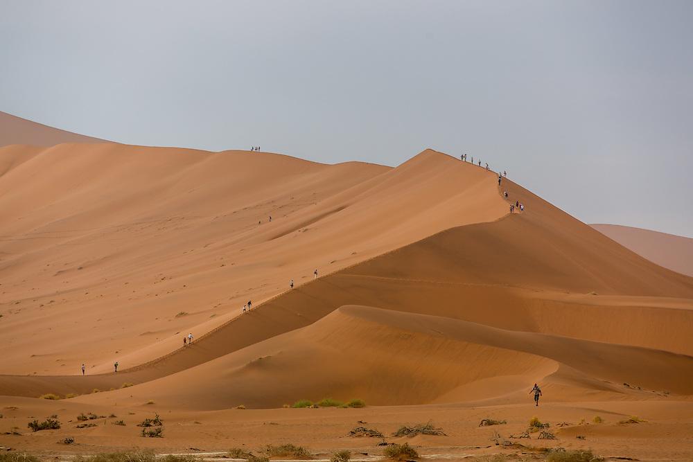People climbing dunes at Dead Vlei, Namib-Naukluft National Park, Sossusvlei Area, Namibia