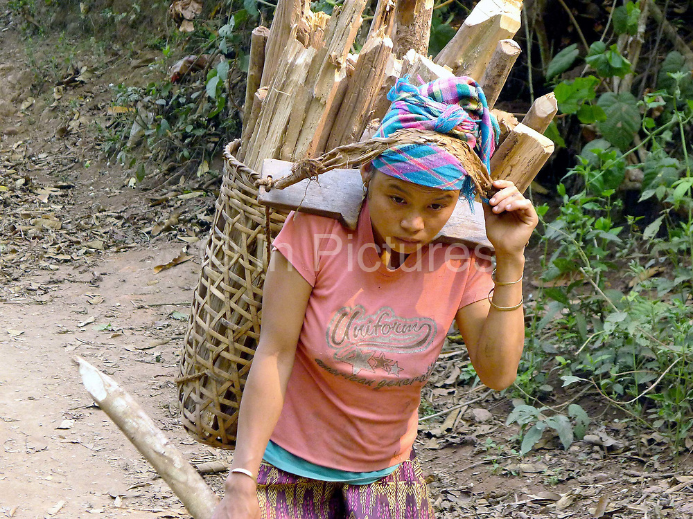 """A Laoseng ethnic minority woman carries firewood in a traditional bamboo basket to the new village from the old village of Ban Phoumeuang  which is being temporarily relocated away from the Nam Ou river, during the construction of the Nam Ou Cascade Hydropower Project Dam 6. The Nam Ou river connects small riverside villages and provides the rural population with food for fishing. It is a place where children play and families bathe, where men fish and women wash their clothes. But this river and others like it, that are the lifeline of rural communities and local economies are being blocked, diverted and decimated by dams. The Lao government hopes to transform the country into """"the battery of Southeast Asia"""" by exporting the power to Thailand and Vietnam."""