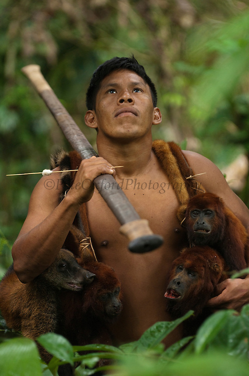 Huaorani Indian - Geme Baiwa with hunted howler monkeys and coati. Gabaro Community. Yasuni National Park.<br /> Amazon rainforest, ECUADOR.  South America<br /> This Indian tribe were basically uncontacted until 1956 when missionaries from the Summer Institute of Linguistics made contact with them. However there are still some groups from the tribe that remain uncontacted.  They are known as the Tagaeri. Traditionally these Indians were very hostile and killed many people who tried to enter into their territory. Their territory is in the Yasuni National Park which is now also being exploited for oil.
