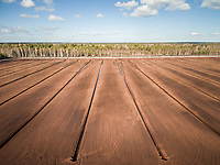 Aerial view of soil irrigation and forest in farmland in Estonia.