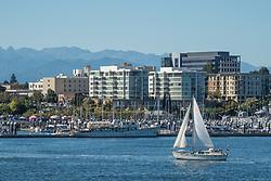United States, Washington, Bremerton, sailboat near marina and downtown