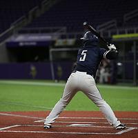 Baseball: Hamline University Pipers vs. Lawrence University Vikings
