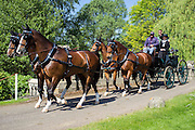 © Licensed to London News Pictures. 15/05/2014. Windsor, UK. People exercise their horses in the morning sunshine.  The second day of The Royal Windsor Horse Show, set in the grounds of Windsor Castle. Established in 1943. Photo credit : Stephen Simpson/LNP