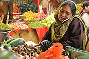 Indian woman on her cell phone at the Leh vegetable market, Ladakh, Jammu and Kashmir, India