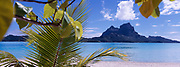 Panoramic of Mount Otemanu with palms in foreground, Bora Bora, French Polynesia
