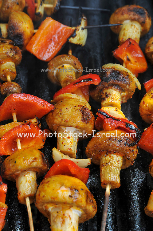 Vegetarian skewers with mushrooms and peppers on a BBQ