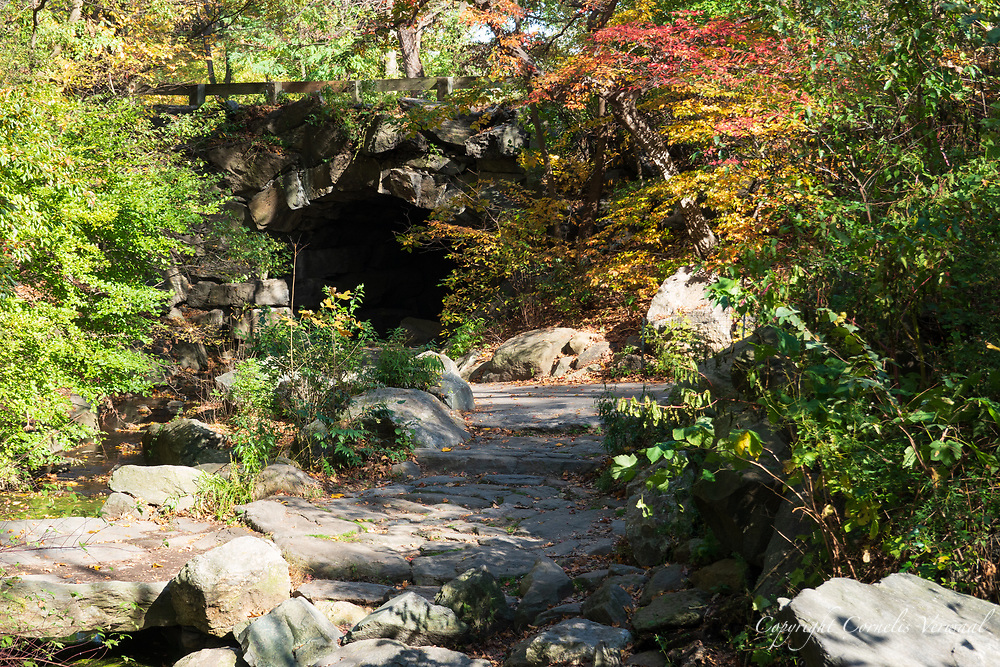 Autumn colors at The Ravine in the North Woods of Central Park approaching Huddlestone Arch.