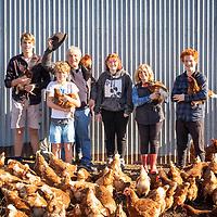 Somerville Egg Farm 2022