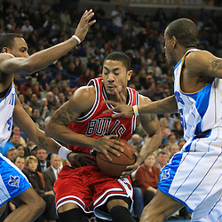 04 February 2009:  Chicago Bulls guard Derrick Rose (1) drives between Hornets defenders Rasual Butler (45) and Antonio Daniels (50) during a 93-107 loss by the New Orleans Hornets to the Chicago Bulls at the New Orleans Arena in New Orleans, LA.