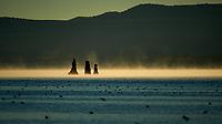 Mono Lake, South Tufa Area. Image taken with a Nikon D3 camera and 200 mm f/2 lens (ISO 200, 200mm, f/4, 1/6400 sec).
