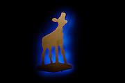 Het logo van het Nederlands Film Festival. Op de laatste avond van het Nederlands Film Festival NFF worden de Gouden Kalveren uitgereikt, Nederlands hoogste filmprijs.<br /> <br /> Logo of the Nederlands Film Festival at the Gouden Kalf Gala. The Gouden Kalf (Golden Calf), the award for the best movie, is presented at the gala on the last evening of the Nederlands Film Festival in Utrecht. Carice van Houten won her fifth Gouden Kalf, a record.