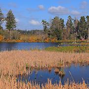Bandon Marsh Wildlife Refuge - Oregon Coast