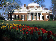 Monticello-Home of Thomas Jefferson in Charlottesville, Va. Photo/Andrew Shurtleff..spring tulips, garden Display image Only: Monticello-the historical home of Thomas Jefferson located in Charlottesville, Va. Photo/Andrew Shurtleff