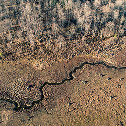 Drone view of Catherine Swamp in Hazelhurst, Pennsylvania. Spring.