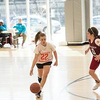 Alexandria City Basketball Semifinals March 2018