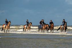 Strandwandeling, Lejeune Philippe, Van Steen Kris<br /> Stal Lejeune - Oostduinkerke 2019<br /> © Hippo Foto - Dirk Caremans<br /> 29/11/2019