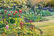Bluebell Cottage Gardens - April