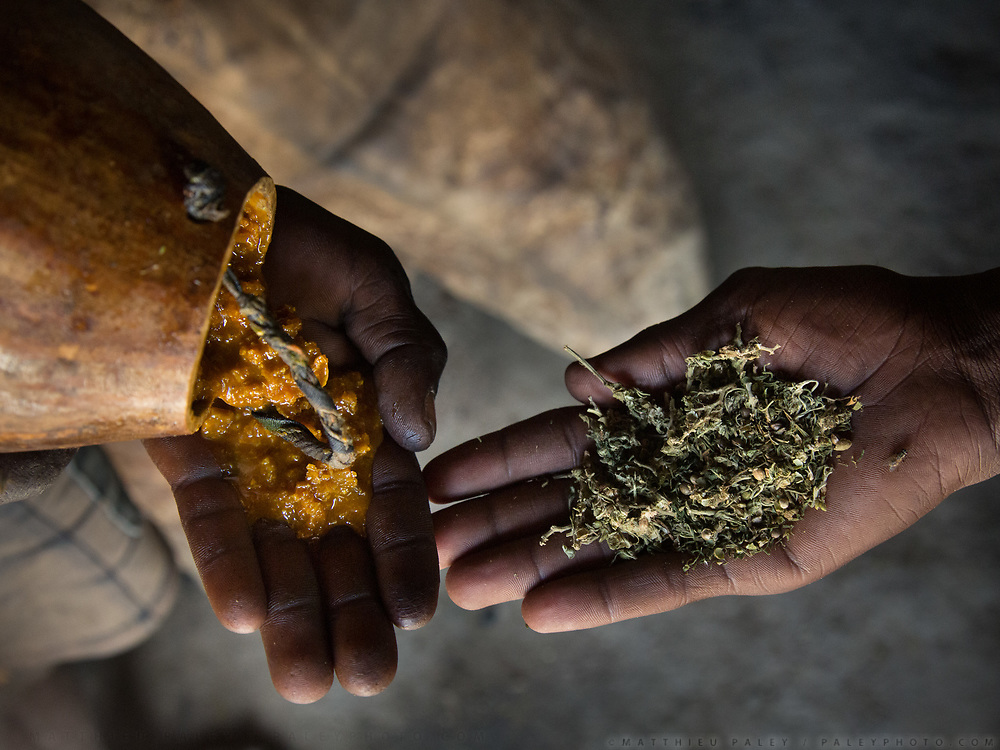 Honey collected by Hadza is exchanged against Marijuana grown by Datoga. Datoga herder camp near the Hadza camp of Dedauko.
