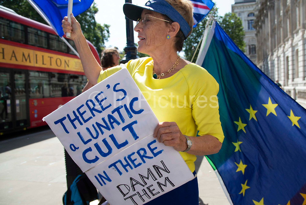 Pro remain protest outside the Cabinet office in Whitehall, London, United Kingdom on 22nd August 2019. Inside ministers are discussing Brexit at a daily Brexit Cabinet Meeting.