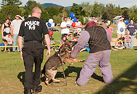 Sargeant Mike Finogle with Jago and Patrol Officer Kevin Shortt present a K9 demonstration during Laconia Police Department's Block Party at Opechee Cove Tuesday evening for National Night Out.   (Karen Bobotas/for the Laconia Daily Sun)
