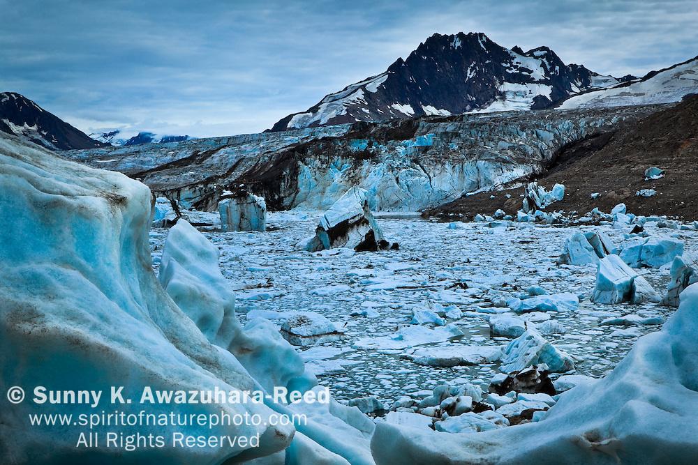 Iceberg Lake and Bagley Icefield, Wrangell - St. Elias Park, Alaska