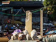 12 NOVEMBER 2015 - BANGKOK, THAILAND:  Buddha heads saved from a demolished home near Wat Kalayanamit.  Fifty-four homes around Wat Kalayanamit, a historic Buddhist temple on the Chao Phraya River in the Thonburi section of Bangkok, are being razed and the residents evicted to make way for new development at the temple. The abbot of the temple said he was evicting the residents, who have lived on the temple grounds for generations, because their homes are unsafe and because he wants to improve the temple grounds. The evictions are a part of a Bangkok trend, especially along the Chao Phraya River and BTS light rail lines. Low income people are being evicted from their long time homes to make way for urban renewal.       PHOTO BY JACK KURTZ