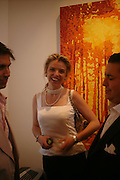 Paula White. Adam Ball ' All that Glitters' private view hosted by Manfredi della Gherardesca and Patrizia Papachristidis .  Charles St. London. 19 June 2005. ONE TIME USE ONLY - DO NOT ARCHIVE  © Copyright Photograph by Dafydd Jones 66 Stockwell Park Rd. London SW9 0DA Tel 020 7733 0108 www.dafjones.com