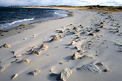 Beach Scene / Rocky Beach
