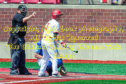 NORMAL, IL - May 01:  John Rave bats, J Mark Huesman umps during a college baseball game between the ISU Redbirds and the Indiana State Sycamores on May 01 2019 at Duffy Bass Field in Normal, IL. (Photo by Alan Look)