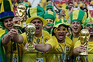 Fans of Brazil during the 2018 FIFA World Cup Russia, Group E football match between Erbia and Brazil on June 27, 2018 at Spartak Stadium in Moscow, Russia - Photo Thiago Bernardes / FramePhoto / ProSportsImages / DPPI