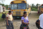 TCGA members arrive for the 2013 Annual General Meeting. The buses used to transport the members from numerous communities were paid with Fair Trade funds, as voted by the majority during the previous year's meeting. Toledo Cacao Growers' Association (TCGA), Julian Cho Technical High School, Mile 14 Southern Highway, Toledo, Belize. January 26, 2013.