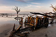 Sunrise over the Boneyard Beach on Bulls Island, South Carolina. Bulls Island is an uninhabited Sea Island 3 miles off the mainland and part of the Cape Romain National Wildlife Refuge. Rising tides caused by climate change and shifting sand has eroded the beach stranding part of the coastal forest in sea water.