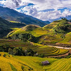 Vietnam - Mu Cang Chai Rice fields (Yen Bai Province)