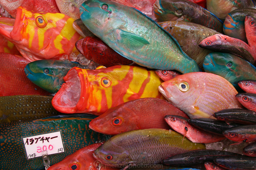 Brilliantly colored parrotfish dominate a stall in the Makishi public market in the Okinawan town of Naha. Meticulously clean, Japanese markets are a testament to the affluence of this island nation. Hungry Planet: What the World Eats (p. 190).