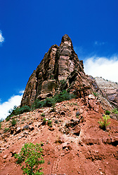 UT: Utah Zion National Park; Checkerboard Mesa.Photo Copyright: Lee Foster, lee@fostertravel.com, www.fostertravel.com, (510) 549-2202.Image: utzion218