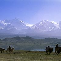 CHINA, Xinjiang. Khyrgiz nomads rides Bactrian camels by Lake Karakul, Pamir Mountains.  7719m Kongur Shan bkg. (L)