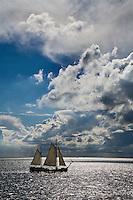VLIELAND -Zeilen met een zeilschip op de Waddenzee. COPYRIGHT KOEN SUYK