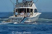 Pacific blue marlin, Makaira nigricans or Makaira mazara, jumps while hooked up during the Hawaii International Billfish Tournament, Kailua Kona, Hawaii ( Central Pacific Ocean ) (editorial only: no MR; no PR)