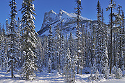 The Canadian Rocky Mountains, Yoho National Park, British Columbia, Canada