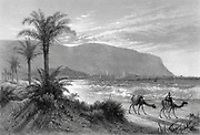 caravan of camels at the Bay of Acre [Haifa] with Mount Carmel in the background Engraving of Steel of from 'Picturesque Palestine, Sinai and Egypt' by Wilson, Charles William, Sir, 1836-1905; Lane-Poole, Stanley, 1854-1931 Volume 3. Published in by J. S. Virtue and Co 1883