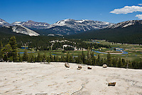 Yosemite national park, California - Tuolumne meadows viewed from Pothole Dome
