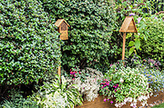 Insect Nest Boxes, in garden, Kent UK