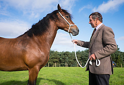 © Licensed to London News Pictures.29/08/15<br /> Bilsdale, UK. <br /> <br /> A man stands with his horse during the 105th Bilsdale Country Show in North Yorkshire.<br /> <br /> Photo credit : Ian Forsyth/LNP