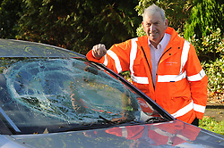 © Licensed to London News Pictures. 28/10/2013<br /> Malcolm Grover (pictured) is lucky to be alive after tree lands on his car.<br /> Storm Damage today (28.10.2013)<br /> Malcolm Grover from Biggin Hill,Kent was driving his car under this tree on Chilshurst Road, Orpington at 6.30AM this morning, He is very lucky to be alive.  (photographer has his mobile number)<br /> A Tree across Chislehurst Road,Orpington,Greater London<br /> due to storm St Jude.<br /> Photo credit :Grant Falvey/LNP