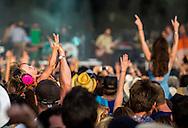 The Bottle Rock Crowd