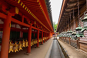 Row of bronze and gold plated lanterns in the Kasuga-Taisha Shrine, Nara, Japan