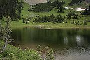 Tourists walk around a tarn at start of Naches Peak Loop Trail in Mt Rainier National Park.