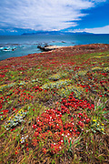 Santa Cruz Island from Carrington Point, Santa Rosa Island, Channel Islands National Park, California USA