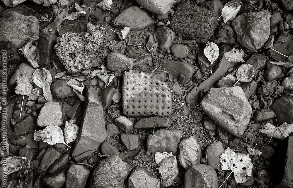 Riverbed Detail, Dalton, MA