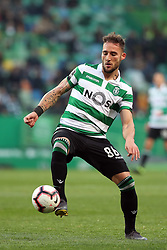 February 3, 2019 - Lisbon, Portugal - Sporting's midfielder Nemanja Gudelj from Serbia in action during the Portuguese League football match Sporting CP vs SL Benfica at Alvalade stadium in Lisbon, Portugal on February 3, 2019. (Credit Image: © Pedro Fiuza/NurPhoto via ZUMA Press)